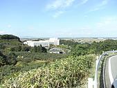柿収穫初体験IN NIIGATA:鳥瞰新潟市
