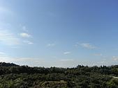 柿収穫初体験IN NIIGATA:美麗的天空