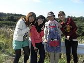 柿収穫初体験IN NIIGATA:阿姨:ひひひひひひ