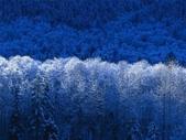 :Winter