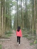 埔里黑森林:img20180220160121_39524015475_o.jpg