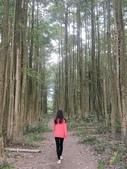 埔里黑森林:img20180220160143_25548525577_o.jpg