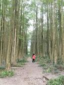 埔里黑森林:img20180220160251_39709393274_o.jpg