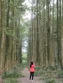 埔里黑森林:img20180220160300_25548502187_o.jpg