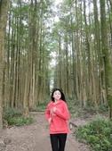 埔里黑森林:img20180220160313_25548514127_o.jpg