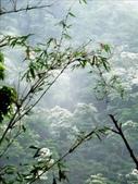 壯觀的桃園石門水庫:1492323007.jpg