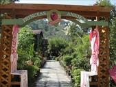夢幻中的安妮公主花園:1852474102.jpg