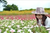 桃園大溪花海農場:1058100428.jpg