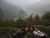 浪漫的薰衣草森林:1933856090.jpg