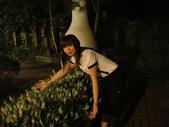 浪漫的薰衣草森林:1933856086.jpg