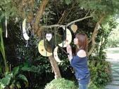 夢幻中的安妮公主花園:1852474108.jpg