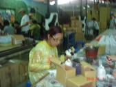 2010年7月我媽公司團遊帶我妹的小孩(:1794839037.jpg