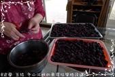 做做小點心:桑椹醬DIY-2