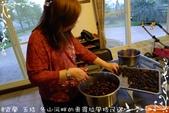 做做小點心:桑椹醬DIY-8