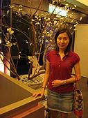 天讚烏龍麵-台北市松壽路61號B1 02-8788-3099:人造櫻花