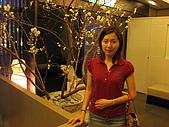 天讚烏龍麵-台北市松壽路61號B1 02-8788-3099:旅遊 178.jpg