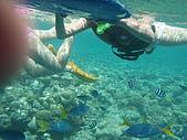 帛琉五日遊-Day3.4大斷層-長灘島-硬珊瑚區-鯊魚城 :第一個潛點-大斷層這兒巳是外海了,風浪較大,讓我有點怕,緊抓浮板不放,jackal說有時風浪大到無法下海的!