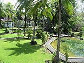 帛琉五日遊-Day5:IMG_0137.JPG
