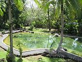 帛琉五日遊-Day5:IMG_0138.JPG