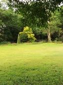 納美花園:IMG_7879.jpg