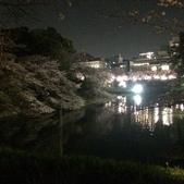 千鳥之淵夜櫻+靖國神社:IMG_1516.JPG