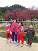 2014武陵農場櫻花季:IMG_3028.jpg