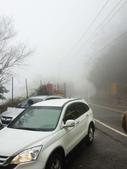2014武陵農場櫻花季:IMG_3034.jpg