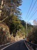 2014武陵農場櫻花季:IMG_3040.jpg