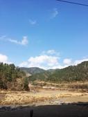 2014武陵農場櫻花季:IMG_3042.jpg