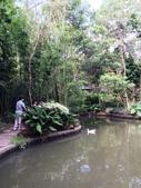 納美花園:IMG_7873.jpg