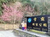 2014武陵農場櫻花季:IMG_3054.jpg