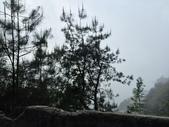 大雪山森林遊樂區:IMG_2781.jpg