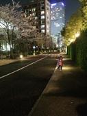 2015赤坂夜櫻:IMG_1938.jpg