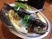泰雅渡假村+七彩魚:IMG_8249.jpg