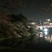 千鳥之淵夜櫻+靖國神社:IMG_1519.JPG