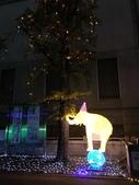 阿倍野・天王寺動物園100週年彩燈ZOO:阿倍野・天王寺動物園100週年彩燈ZOO