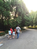 泰雅渡假村+七彩魚:IMG_8217.jpg