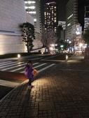 2015赤坂夜櫻:IMG_1946.jpg