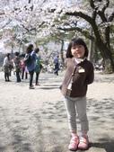 小田原城櫻花:P1250491.JPG