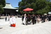 夏休日本東京鐵腿之旅:IMG_9831.JPG