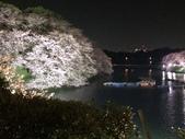 千鳥之淵夜櫻+靖國神社:IMG_1753.JPG