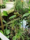 納美花園:IMG_7867.jpg