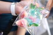 夏休日本東京鐵腿之旅:IMG_9945.JPG