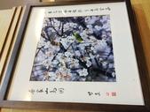泰雅渡假村+七彩魚:IMG_8261.jpg