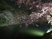 千鳥之淵夜櫻+靖國神社:IMG_1529.JPG