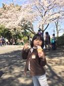 小田原城櫻花:IMG_2036.JPG