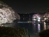 千鳥之淵夜櫻+靖國神社:IMG_1749.JPG