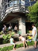 泰雅渡假村+七彩魚:IMG_8282.jpg
