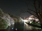 千鳥之淵夜櫻+靖國神社:IMG_1525.JPG