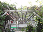 我的花園:DSC00019.JPG